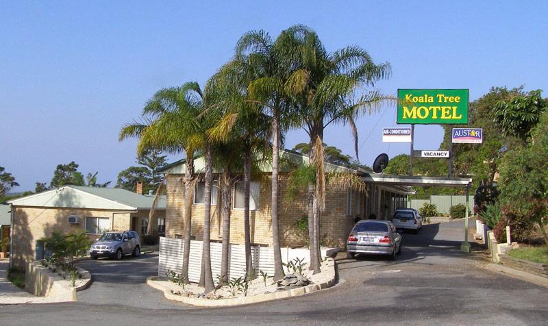 Koala Motel Port Macquarie